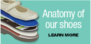 Anatomy Of Our Shoes